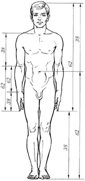 postroenie-grafikov-seksualnogo-vlecheniya