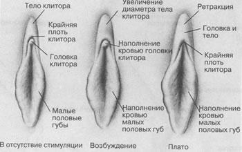 o-masturbatsii-zdorovoy-i-nezdorovoy