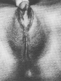 porno-s-neobichnimi-polovimi-organami