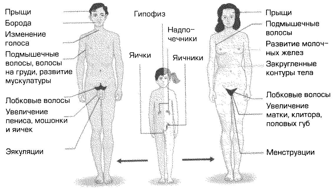 rizhevolosaya-masturbiruet