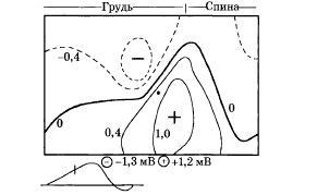 Физические основы электрокардиографии
