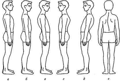 Упражнения при грудном сколиозе в грудном отделе