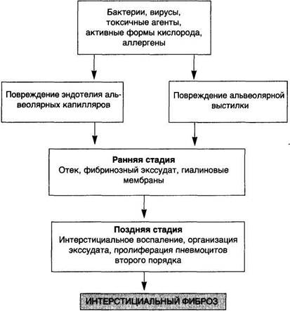 Схема 41.
