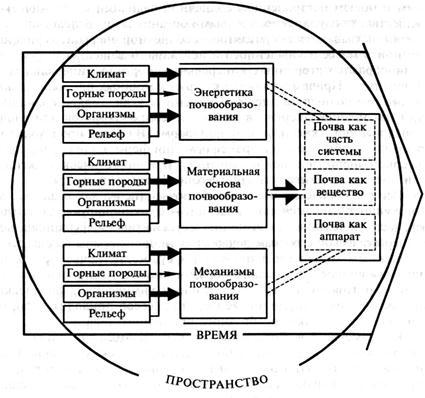 Общая схема почвообразования