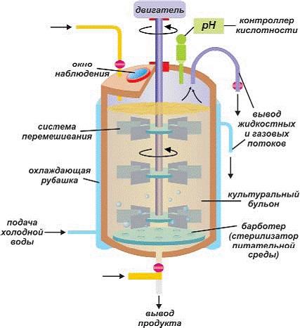 Современные биореакторы