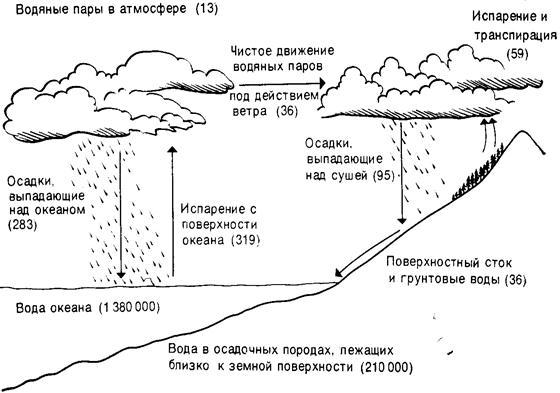 Количества воды (цифры в
