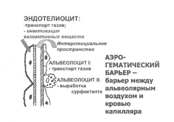 схема аэрогематического