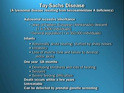 what is tay sachs disease essay
