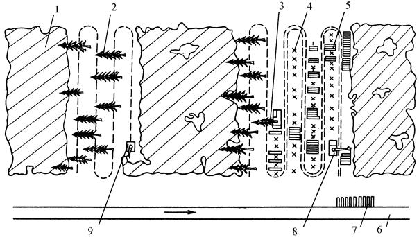 Схема разработки лесосеки