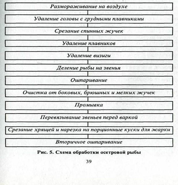 ОБРАБОТКА ОСЕТРОВОЙ РЫБЫ
