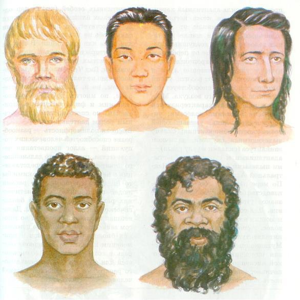 расы людей в картинках происходит