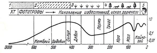 Рисунок 28 – Схема эволюции