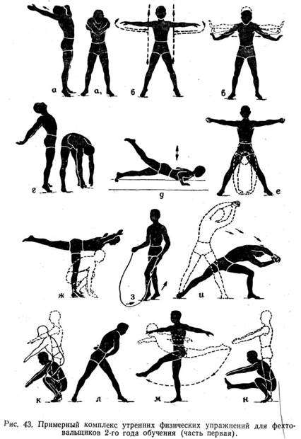 Картинки комплексов физических упражнений