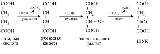 Схема реакции восстановления щавелевоуксусной кислоты