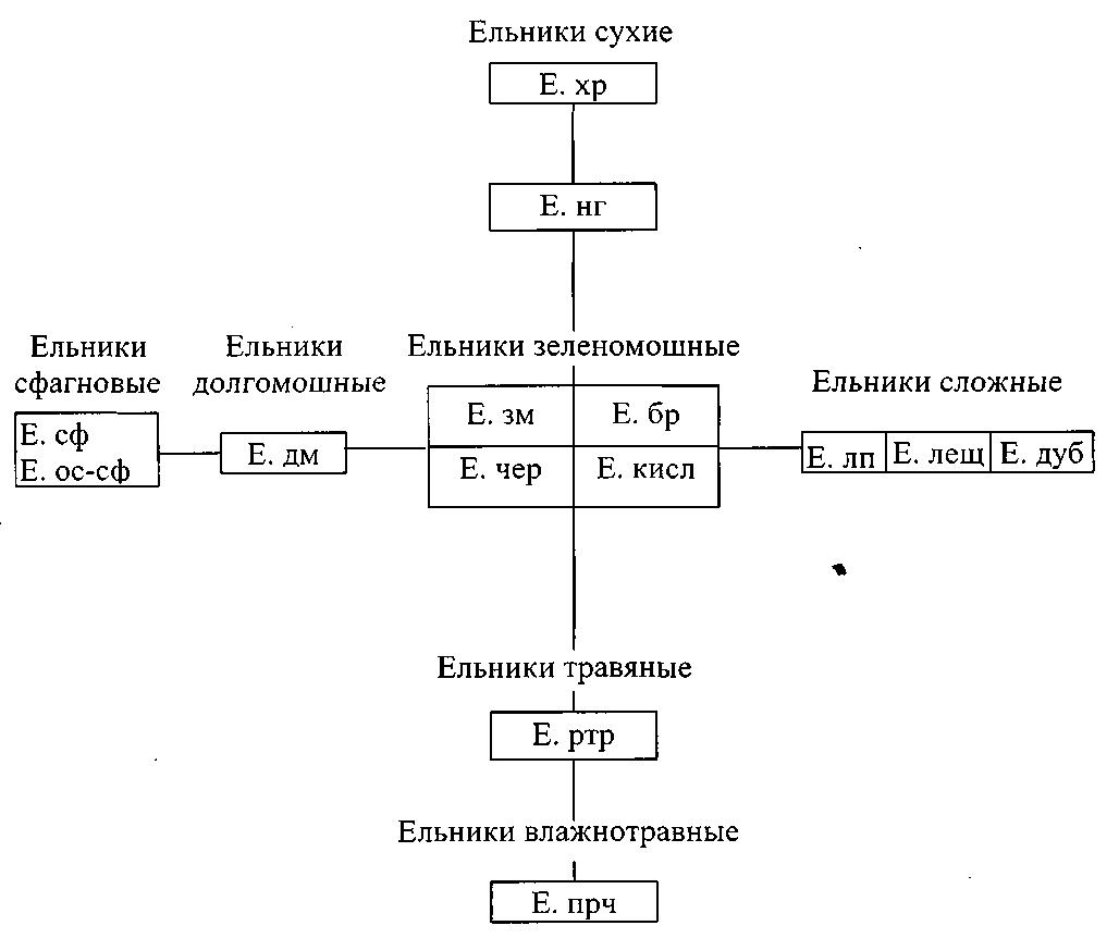 Схема типов еловых лесов по в.н. сукачеву