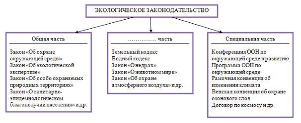 Основы экологии схемы