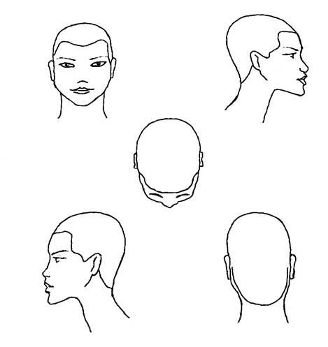 Для парикмахеров схема