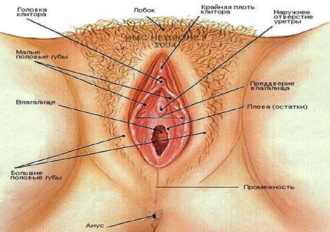 plastika-vlagalisha-pri-menopauze