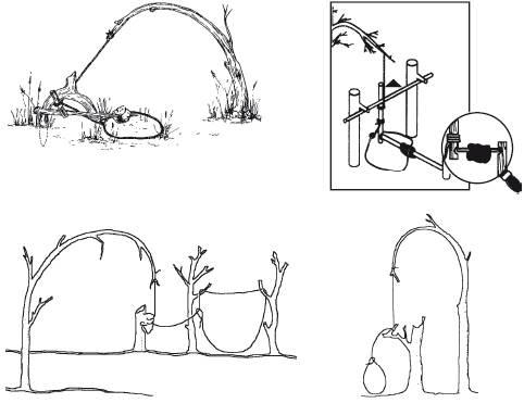 Как сделать ловушку для заяц