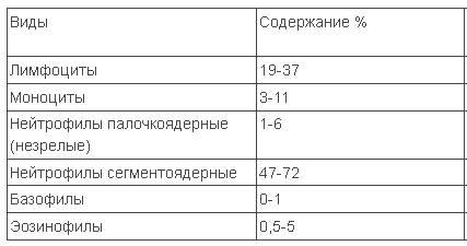 tehnika-podscheta-spermogrammi