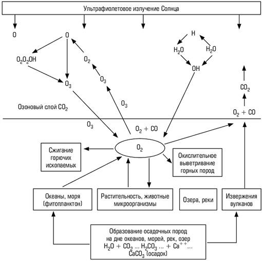 Биогеохимический цикл кислорода схема.