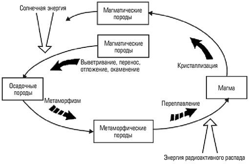 Круговорот кислорода схема, таблица — схемо. Рф.