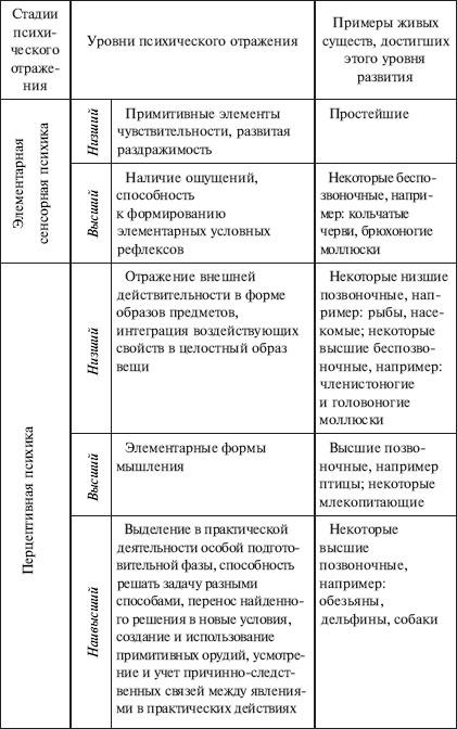 1.Сущность и структура обучения : Анна Луковцева.  4.Основные этапы развития...