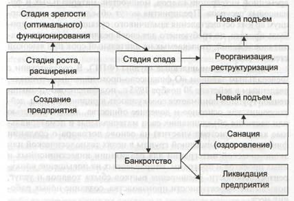 жизненный цикл предприятия банкротство и ликвидация предприятий