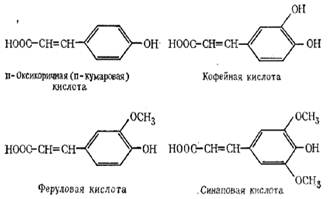 examination of trans cinnamic acid