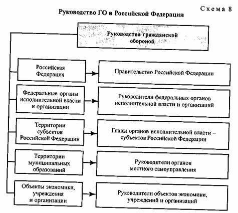 Структура го рф схема