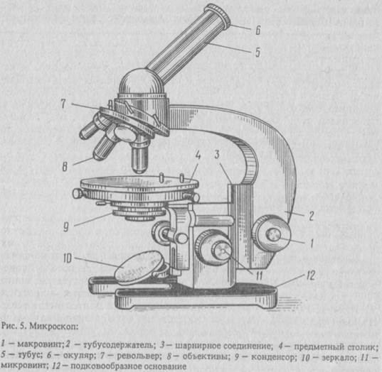 Изображение микроскопа на схеме
