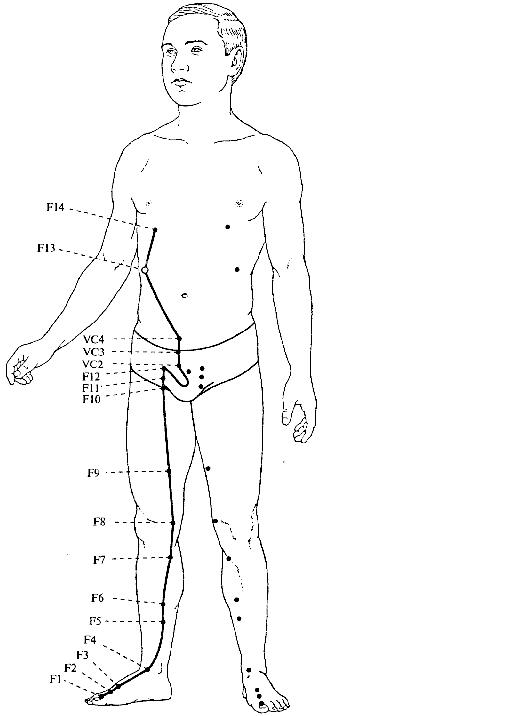 точки тела рисунок