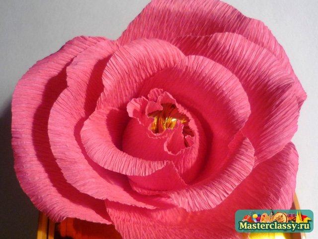 Бутоны розы из гофрированной бумаги и конфет мастер класс 36
