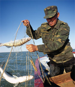 рыбалка в кыргызстане магазин