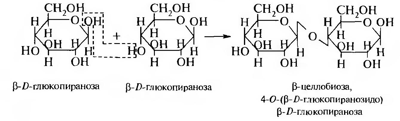Целлобиоза