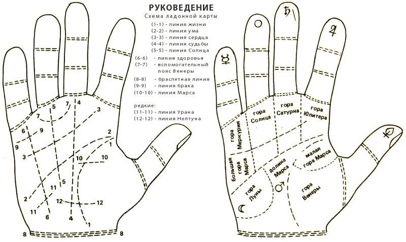Хиромантия что можно прочитать по своей руке