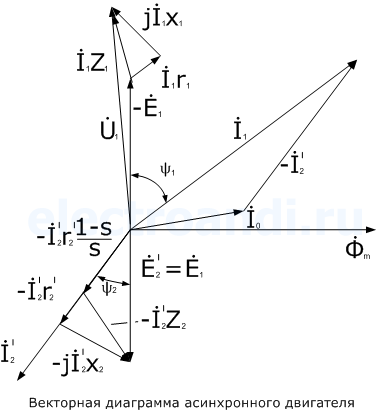 временная и векторная диаграммв термобелье для