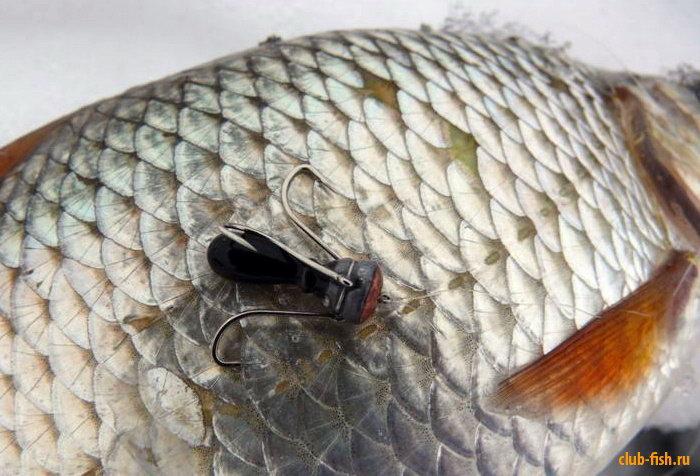 запрещенные рыболовные снасти фото