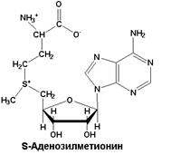 SAdenosyl Methionine  Scientific Review on Usage Dosage