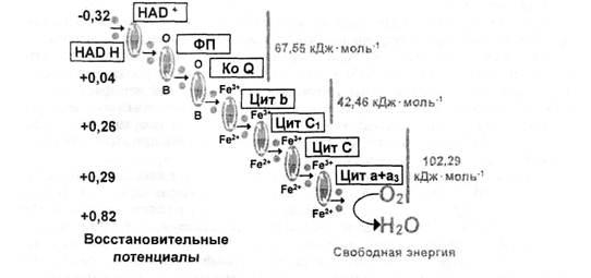 Схема межмолекулярного