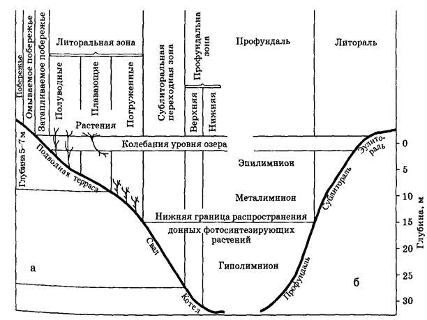 http://ok-t.ru/studopediaru/baza3/43582659390.files/image020.jpg