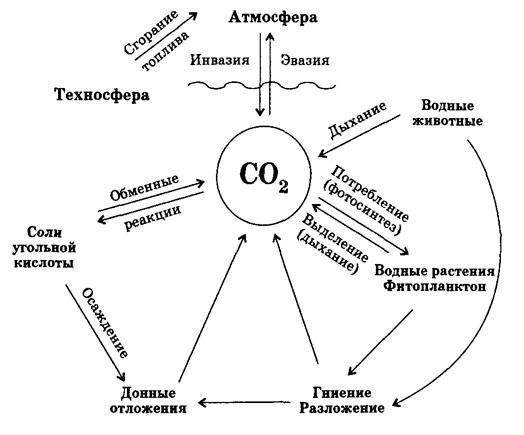 Схема круговорота СО2 в