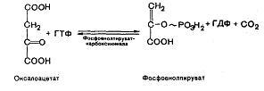 Фосфоенолпируват