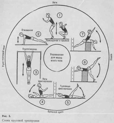 Круговой метод тренировки схема