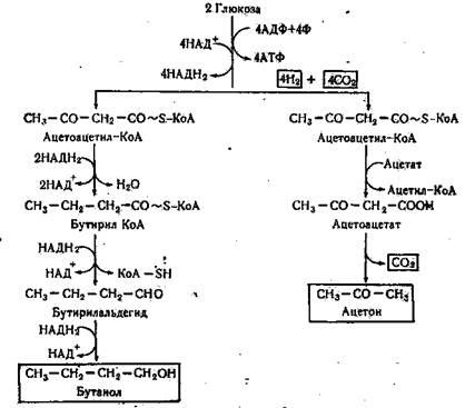 Рисунок Г.3 – Схема