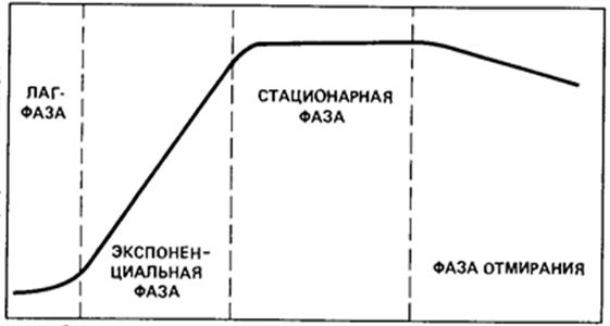 http://ok-t.ru/studopediaru/baza4/834205581812.files/image024.jpg