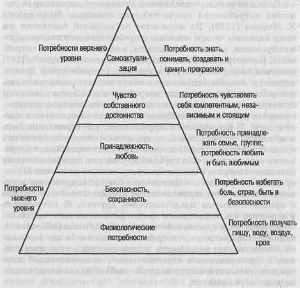 Структура мотивации