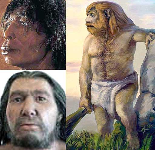 Ява неандерталец человек нгандонг
