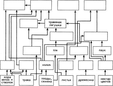Радиационно-экологические исследования при обосновании.