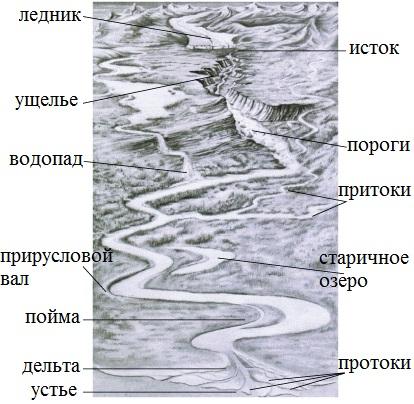 Основные элементы реки